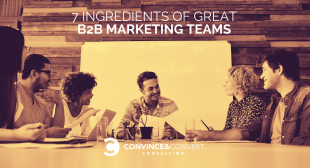7 Ingredients of Great B2B Marketing Teams