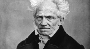 Schopenhauer's Secret Guide to Love You Need to Hear