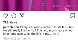Amy Schumer Claps Back at Perez Hilton Saying Her Career Is 'Stalled' Because She's Pregnant