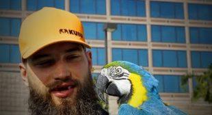Funny Birds 🐦🐦 Funniest Parrots Ever (Full) [Funny Pets]