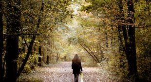How the Shorter Days of Fall Can Lift You Up Instead of Bring You Down