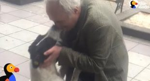 Man Films Himself Reuniting With Dog After 3 Years Apart | The Dodo