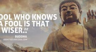 The Top 70 Buddha Quotes