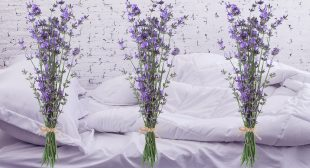 The Actual Health Benefits of Aromatherapy
