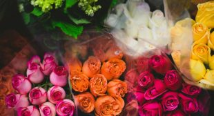 When I Give Someone Flowers, What Message is the Color Sending?
