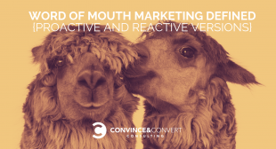 Word of Mouth Marketing Defined {Proactive and Reactive Versions}