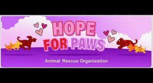 NEW video on our website and another one coming tomorrow: www.HopeForPaws.org
