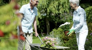 Smart Business Ideas For Retired Couples