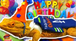 WORLDS FIRST BIRTHDAY PARTY AT THE REPTILE ZOO!!! | BRIAN BARCZYK