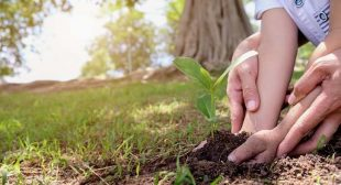 Earth Day Is a Mindset – Embrace It Fully
