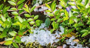 How Tech Can Protect Your Home From Hail Damage