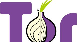 Tor vs VPN – What is Your Preference?