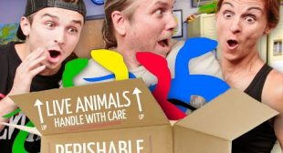 UNBOXING SNAKES WITH THE ENTIRE BARCZYK FAMILY!! | BRIAN BARCZYK