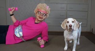 Dogs Prank Nerd Girl! Funny Dogs Maymo & Potpie