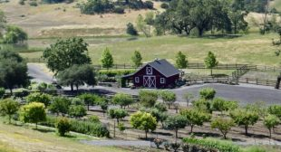 BBaF Podcast Episode 66: Sonoma Wine Country with Beth Costa