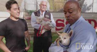 "Cesar Millan's Dog Nation: San Francisco, ""Marin Humane Society Pen Pals Program"""