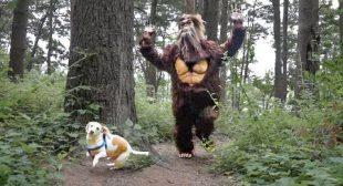 Dog vs Bigfoot Prank: Funny Dogs Maymo, Potpie & Penny