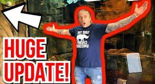 YOU WON'T BELIEVE WHAT'S HAPPENING AT THE REPTILE ZOO!!!! | BRIAN BARCZYK