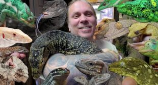 ALL MY LIZARDS IN ONE VIDEO!! | BRIAN BARCZYK