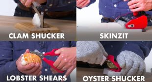 5 Seafood Kitchen Gadgets Improved By Design Expert | Well Equipped | Epicurious