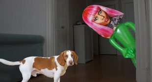Dog vs Nicki Minaj Pranks: Funny Dogs Maymo & Potpie Prank Each Other