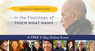 Free Online Summit to Cultivate Mindfulness and Compassion