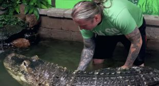GETTING in the WATER with my BIG PET ALLIGATOR!! why not? | BRIAN BARCZYK