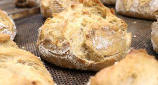 How To Feed Sourdough Starter | Sourdough Recipe