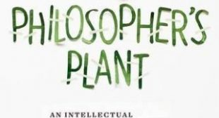 Leibniz's Blades of Grass: The Philosophy of Plants, Difference as the Wellspring of Identity, and How Diversity Gives Meaning to the World