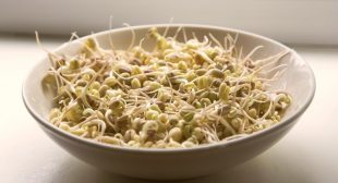How To Grow Sprouts At Home In Just 1 Week