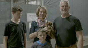 Virgin Australia reunites puppy with family after five months apart