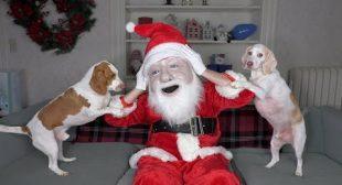 Dogs Think Santa is Intruder! Funny Dogs Maymo, Potpie, & Penny Holiday Battle w/Santa Claus